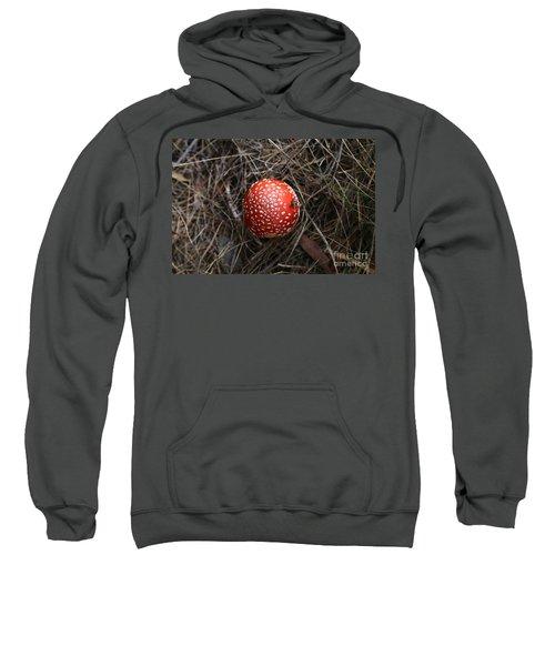 Red Spotty Toadstool Sweatshirt