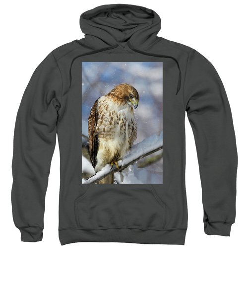 Red Tailed Hawk, Glamour Pose Sweatshirt