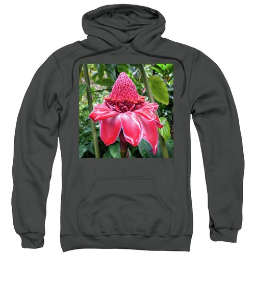 Red Torch Ginger Flower Sweatshirt