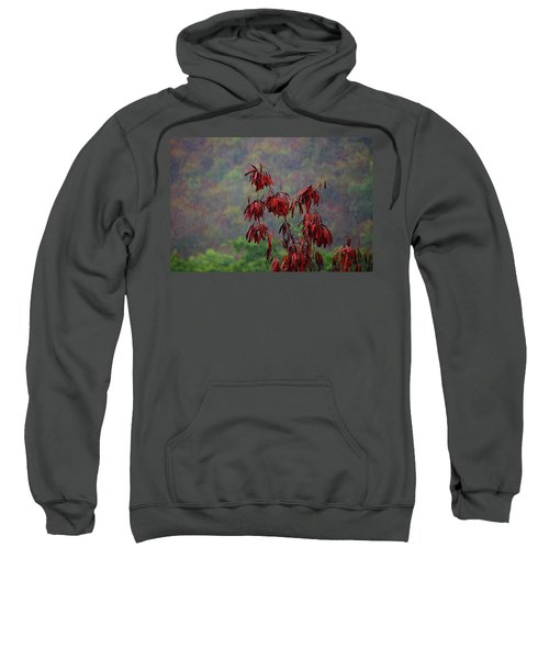 Red Tree In The Rain Sweatshirt