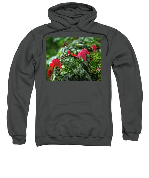 Sweatshirt featuring the photograph Red Vine by Bill Pevlor