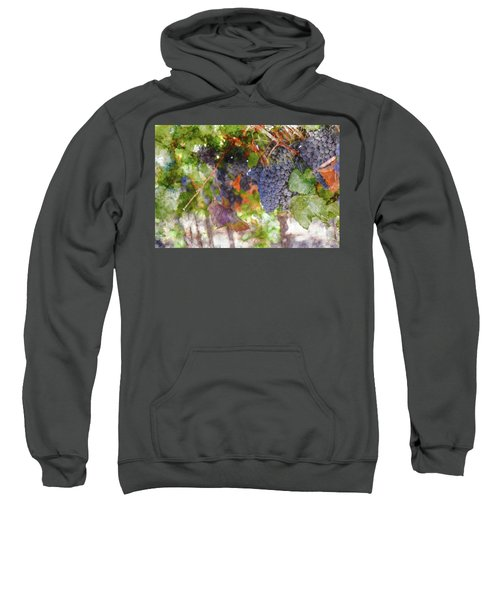 Red Wine Grapes On The Vine In Wine Country Sweatshirt