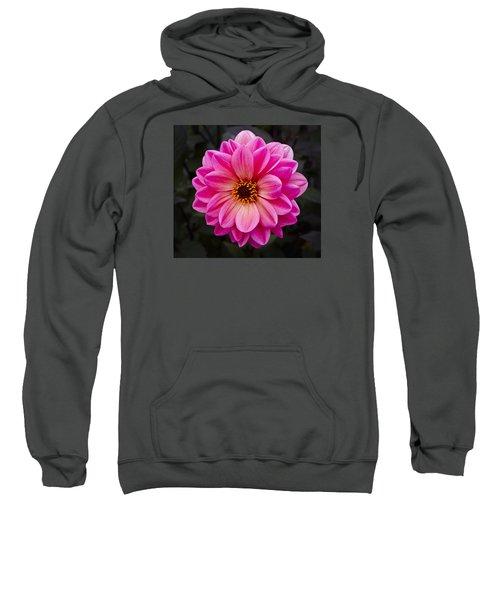 Reddish Dahlia Sweatshirt