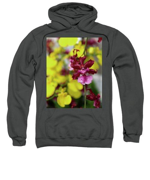 Maroon And Yellow Orchid Sweatshirt