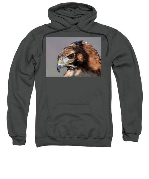 Redtail Hawk Sweatshirt
