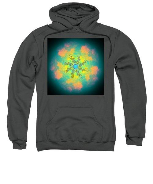 Reluctured Sweatshirt