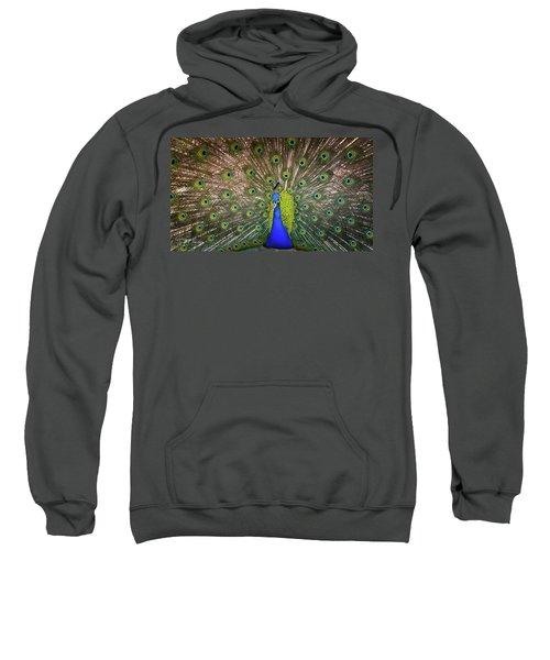 Resplendant Sweatshirt