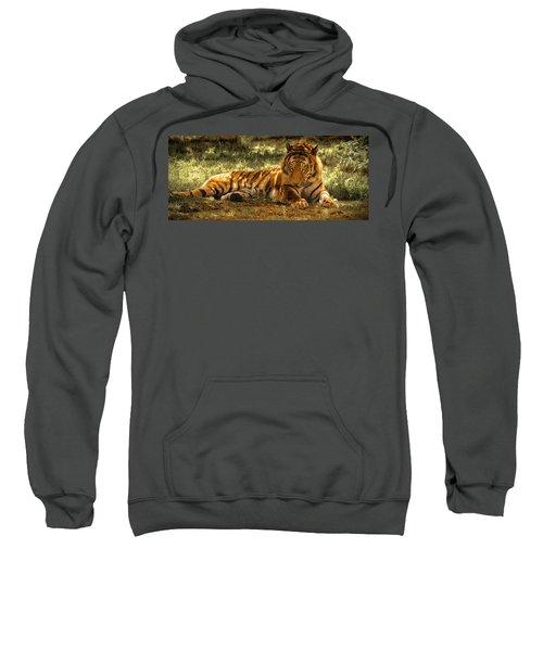 Resting Tiger Sweatshirt