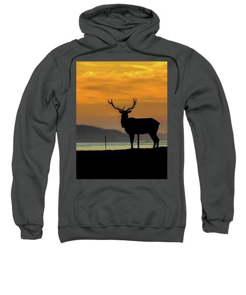 Reyes Morning  Sweatshirt