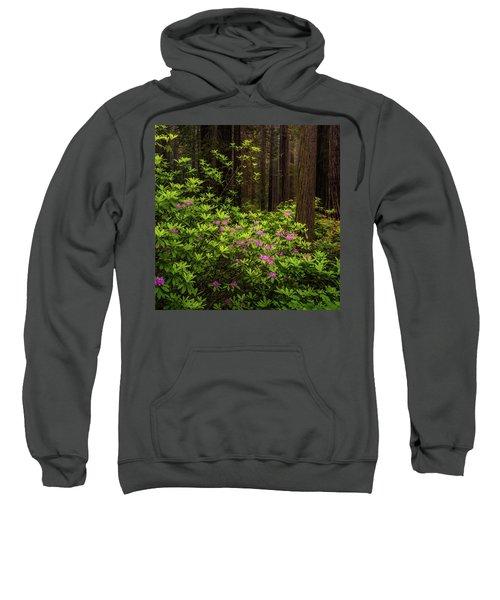Rhododendrons Sweatshirt