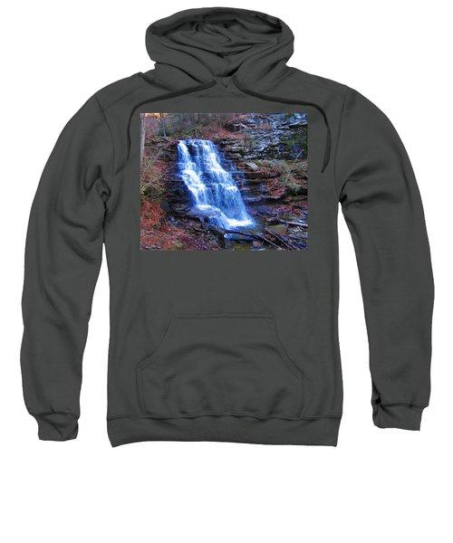 Ricketts Glen Waterfall 3941  Sweatshirt