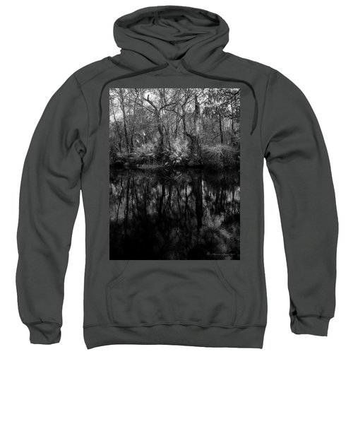 River Bank Palmetto Sweatshirt by Marvin Spates