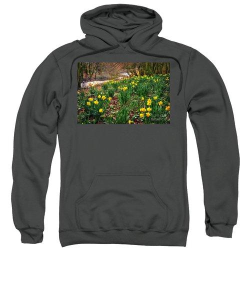 Riverside Daffodils In Spring Sweatshirt