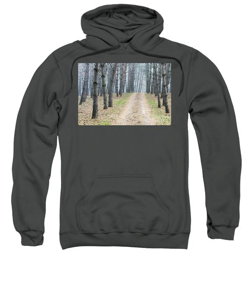 Road To Pine Forest Sweatshirt
