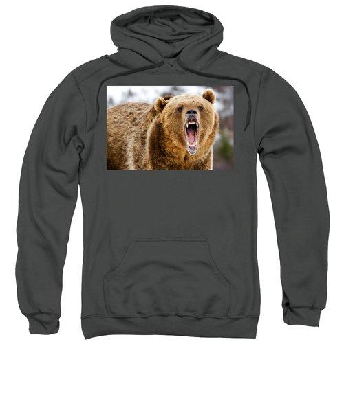 Roaring Grizzly Bear Sweatshirt