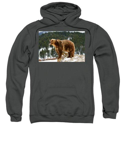 Roaring Grizzly On Rock Sweatshirt