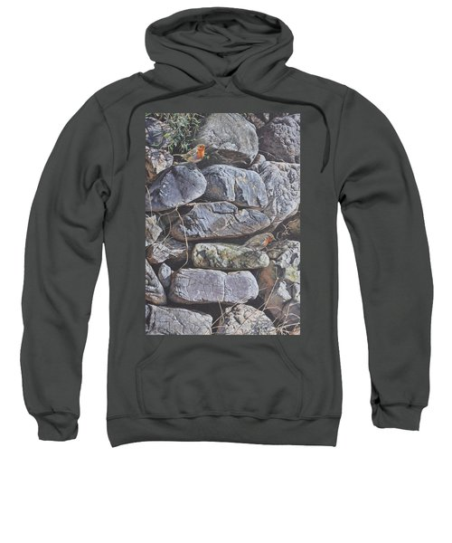 Robins Sweatshirt