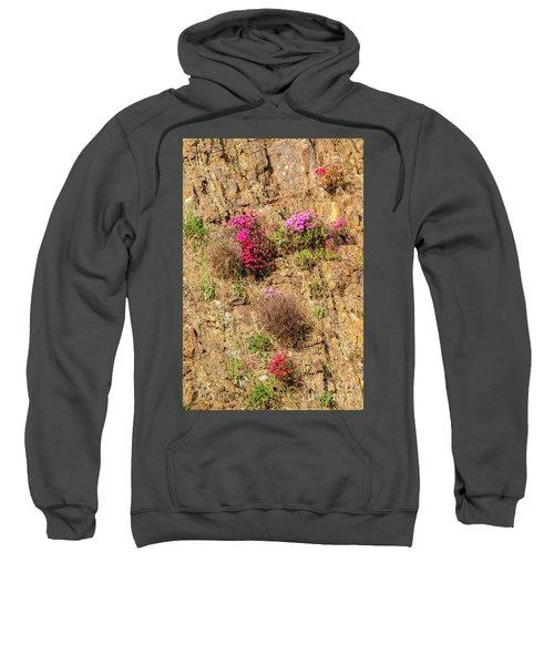 Rock Cutting 1 Sweatshirt
