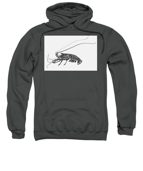 Rock Lobster Sweatshirt