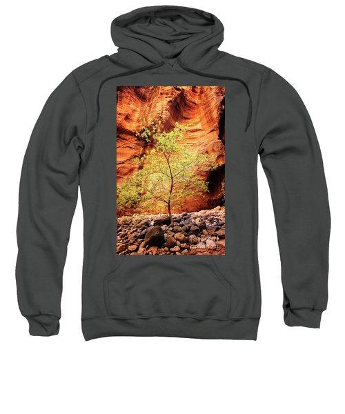 Sweatshirt featuring the photograph Rock Tree by Scott Kemper