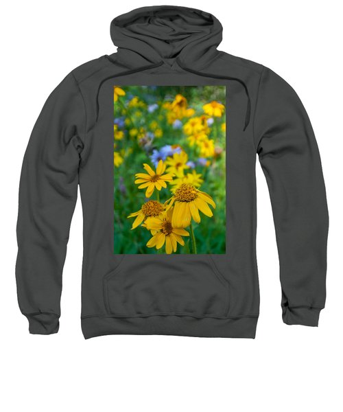 Rocky Mountain Wildflowers Sweatshirt