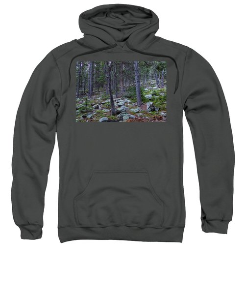 Sweatshirt featuring the photograph Rocky Nature Landscape by James BO Insogna