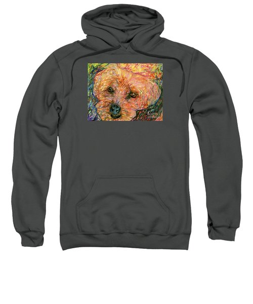 Rocky The Dog Sweatshirt