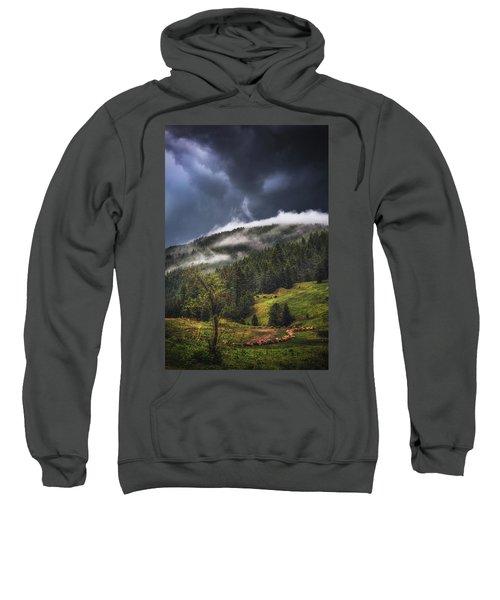 Rolling Through The Trees Sweatshirt