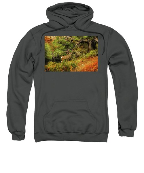 Roosevelt Deer Sweatshirt