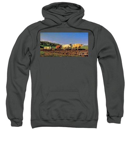 Rosa Bonheur Sweatshirt