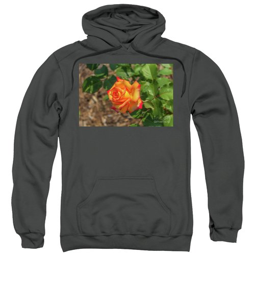 Rosa Peace Sweatshirt