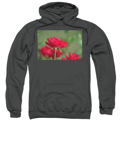 Rose 4 Sweatshirt