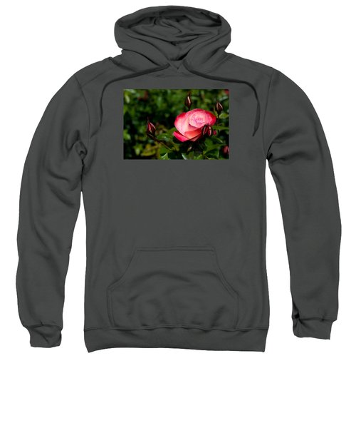Sweatshirt featuring the photograph Rose by Lora Lee Chapman