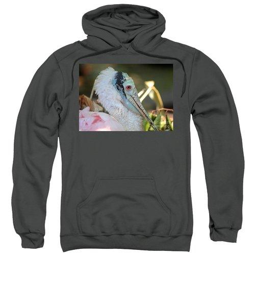 Roseate Spoonbill Profile Sweatshirt by Carol Groenen