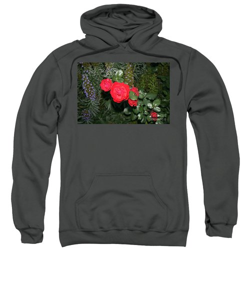 Roses Among Sweatshirt
