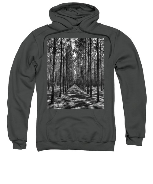 Rows Of Pines Vertical Sweatshirt