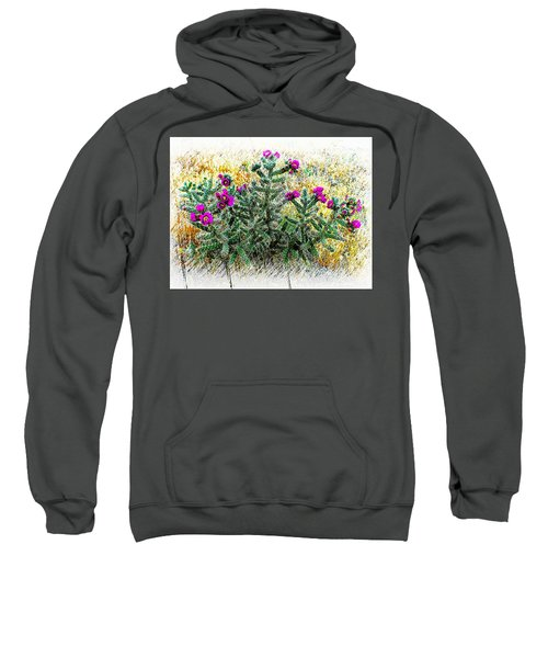Royal Gorge Cactus With Flowers Sweatshirt