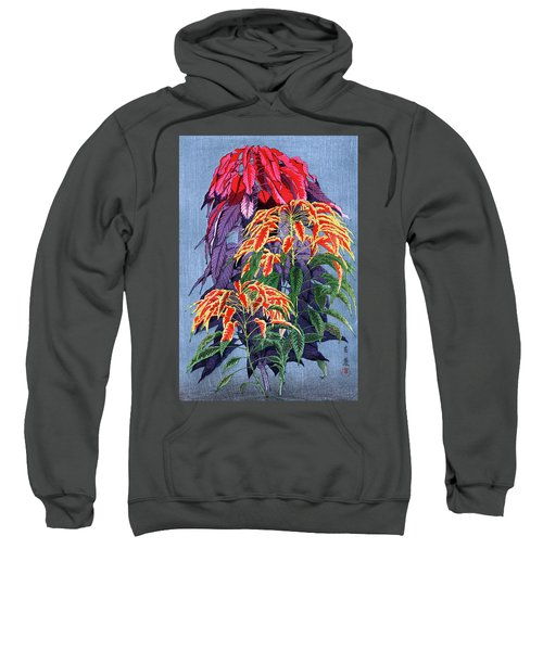 Roys Collection 6 Sweatshirt