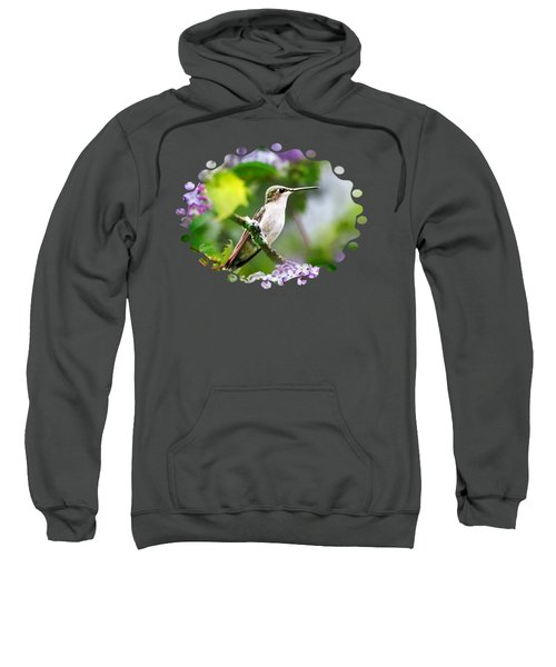Ruby-throated Hummingbird-1 Sweatshirt by Christina Rollo