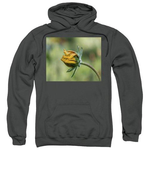 Rudbeckia Fuzzy Bud Sweatshirt
