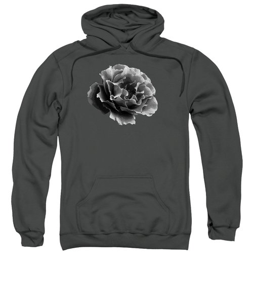 Ruffles Sweatshirt