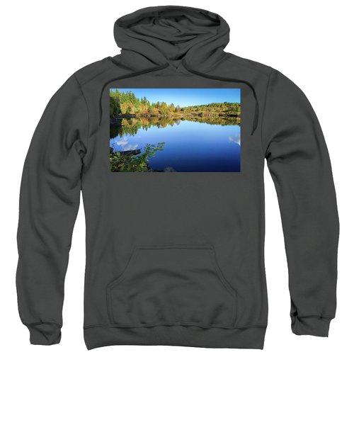 Ruminating The Fall Sweatshirt