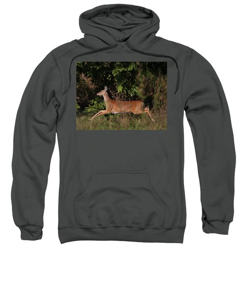 Running Deer Sweatshirt