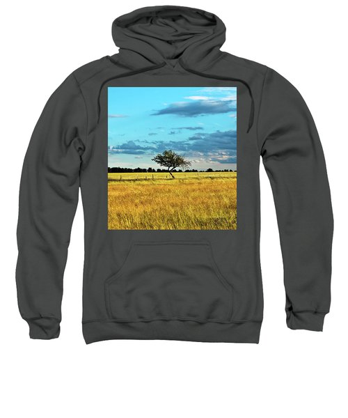 Rural Idyll Poetry Sweatshirt