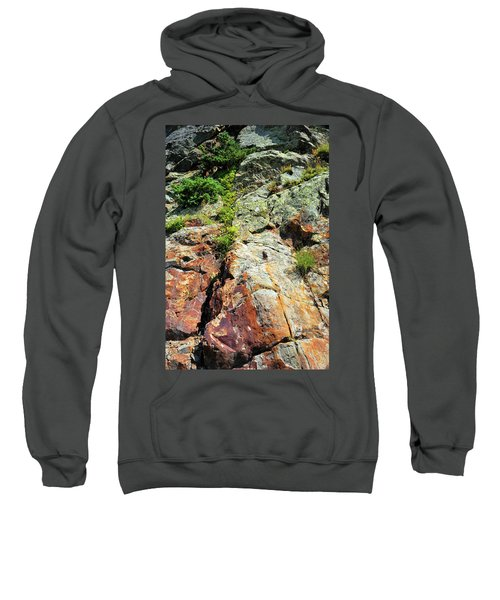 Rusty Rock Face Sweatshirt