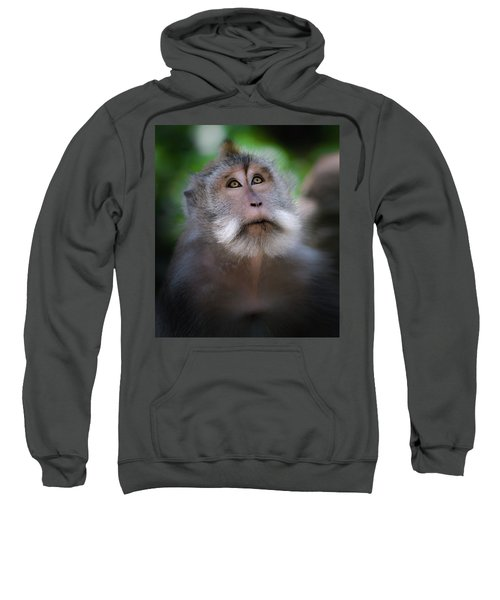 Sacred Monkey Forest Sanctuary Sweatshirt
