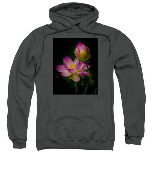 Sacred Water Lily 4 Sweatshirt