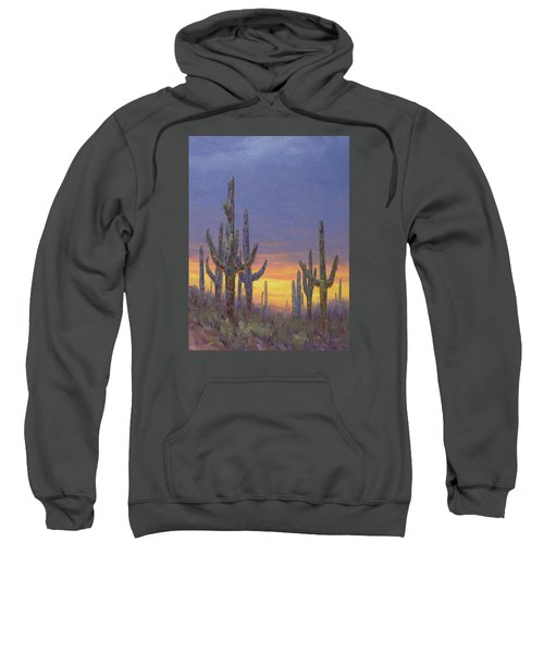 Saguaro Mosaic Sweatshirt