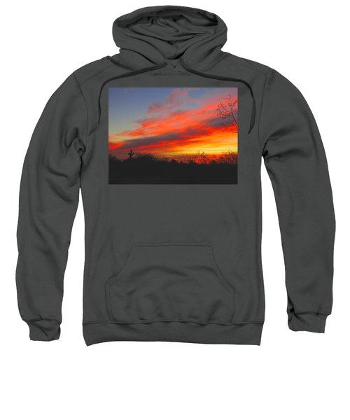 Saguaro Winter Sunrise Sweatshirt