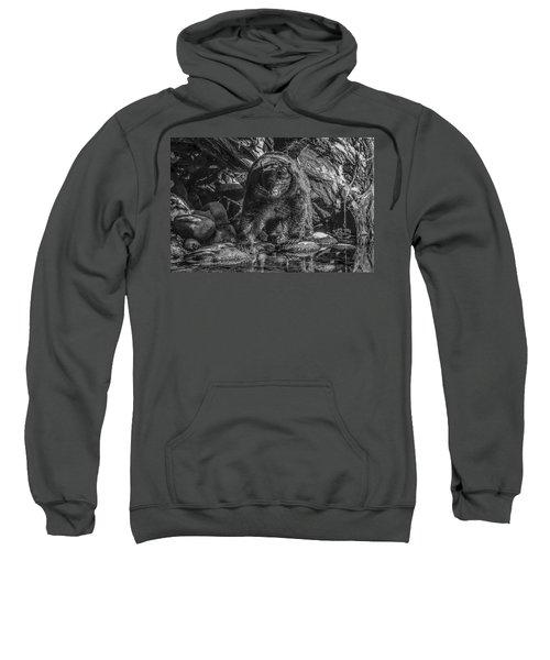 Salmon Seeker Black Bear  Sweatshirt